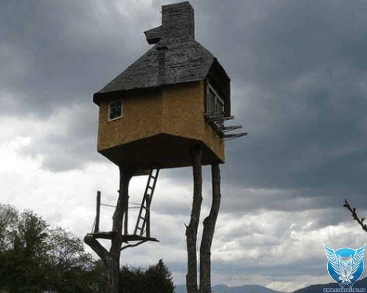 фото домов необычных